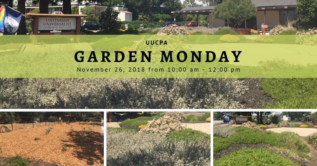 UUCPA Garden Monday on Cyber Monday