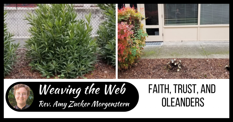 Weaving the Web: Faith, trust, and oleanders