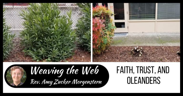 Weaving the Web: Faith, trust, and oleanders
