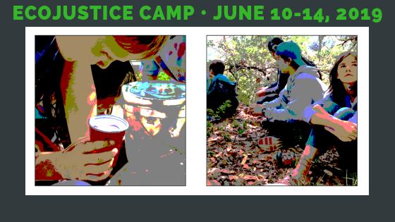 Summer 2019 Ecojustice Camp registration is open