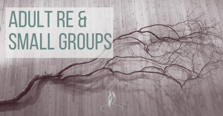 Adult RE/Small groups