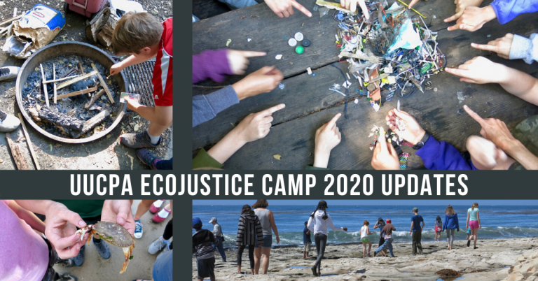 Ecojustice Camp will not hold in-person camp, summer 2020