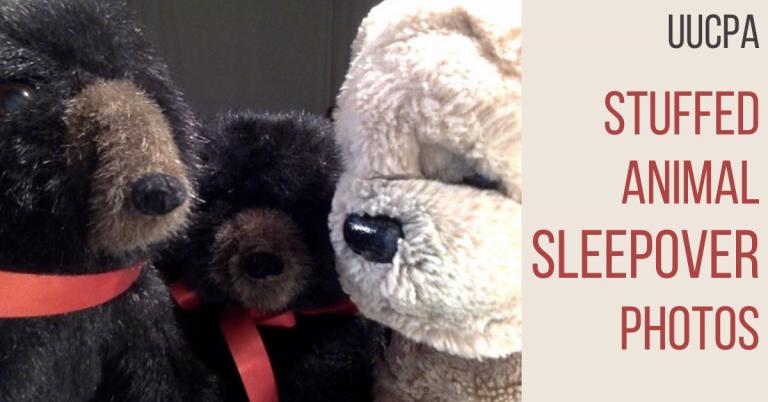 Stuffed Animal Sleepover Updates
