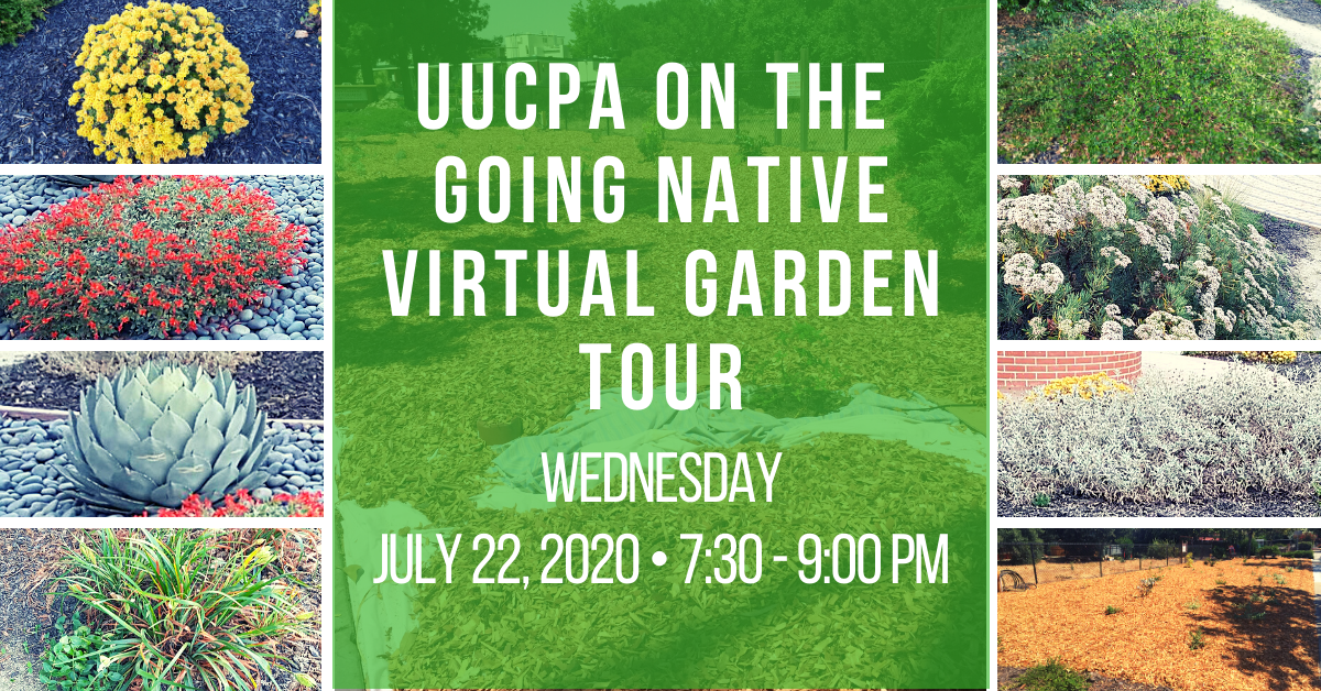 UUCPA Garden on Virtual Tour