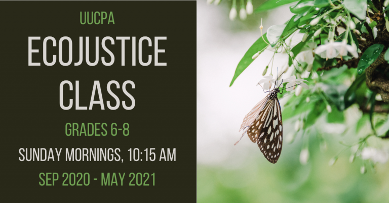 In-person Ecojustice class option for gr. 6-8
