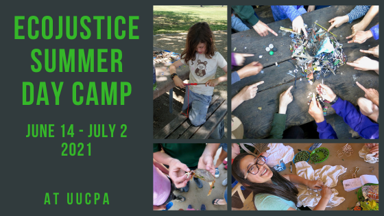Ecojustice Camp still has openings for middle schoolers