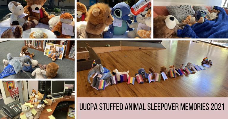Stuffed Animal Sleepover Memories 2021